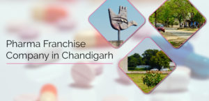 Orange Biotech Best Pharma Franchise Company in Chandigarh